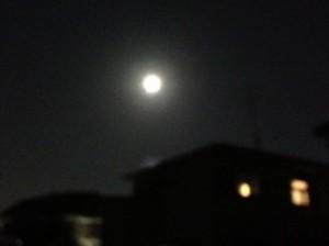 夕方の中秋の名月